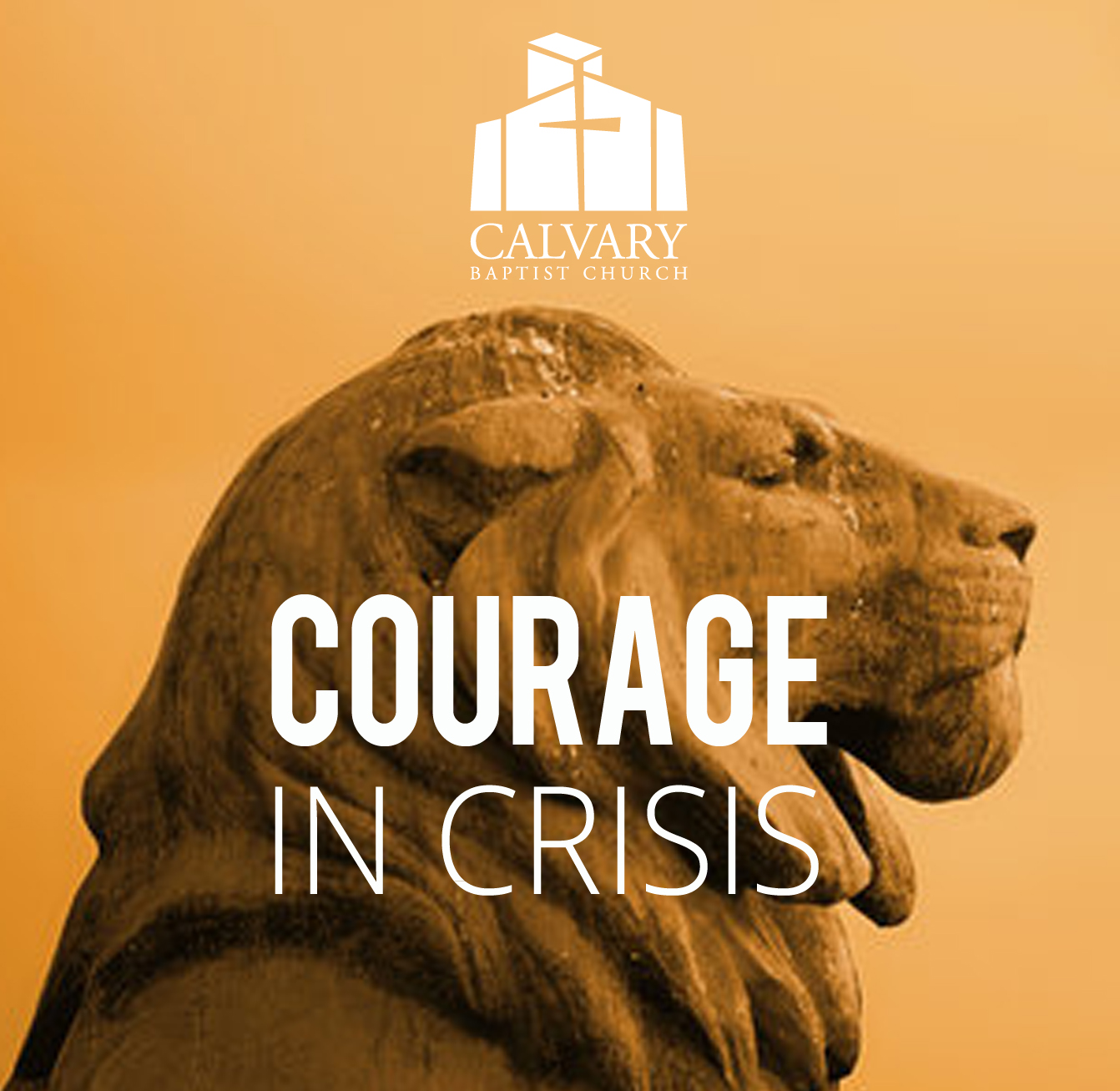 Courage in Crisis
